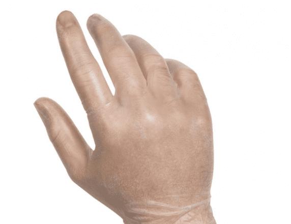 Vinyl Powder-Free Gloves - Sysco Essential Sanitation Products
